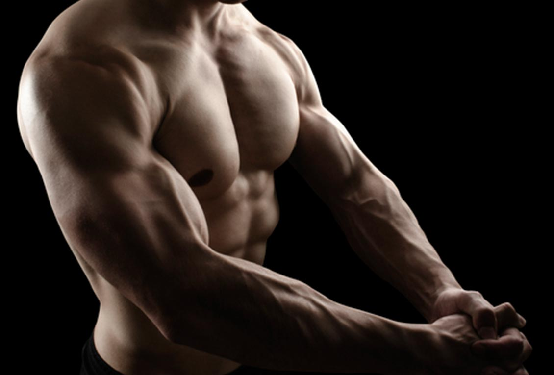 muscle gain and fat loss